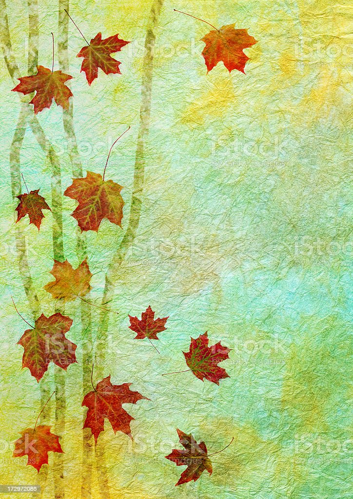 Artistic Autumn Leaf Background Series royalty-free stock photo