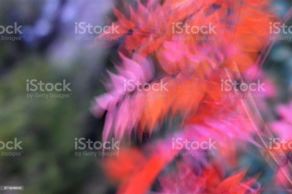 Artistic blur of autumn leaves stock photo