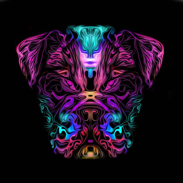 Artistic bulldog on black background picture id1226476850?b=1&k=6&m=1226476850&s=612x612&w=0&h=urajnz8f8eo1qfejbnboagpfhlilpi1q8qolorthfey=