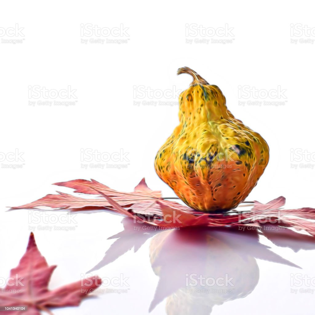 Artistic decorative colorful mini pumpkin stock photo