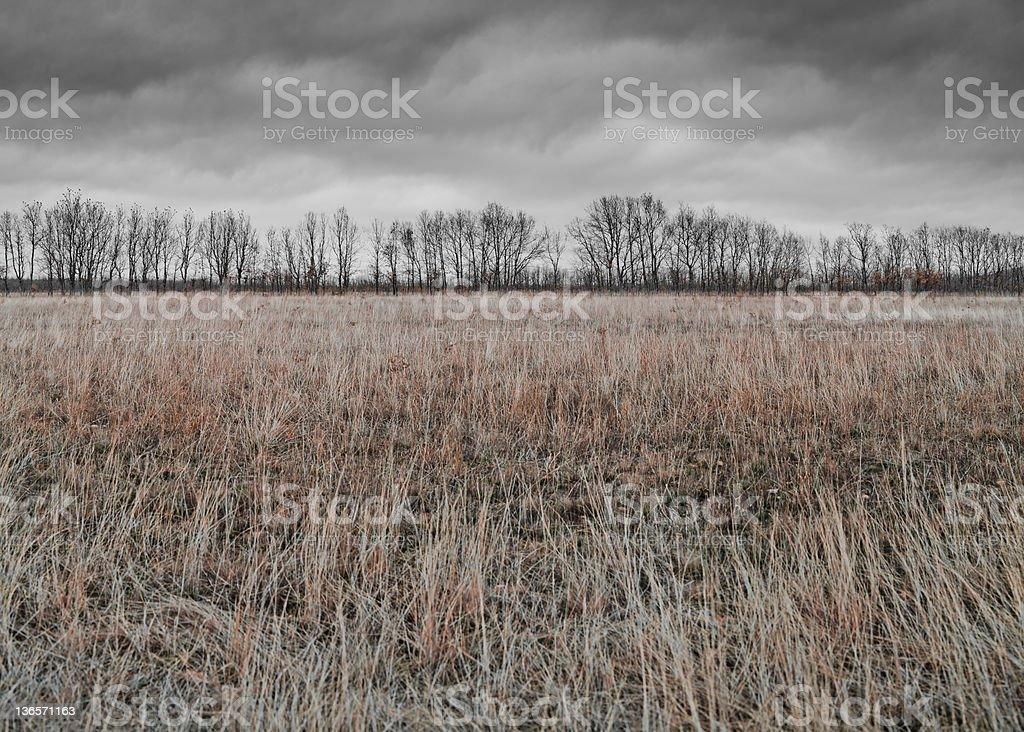 Artistic landscape royalty-free stock photo