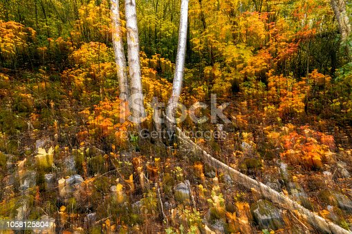 istock Artistic motion blurred image of fall foliage in the Lillooet-Fraser Canyon 1058125804