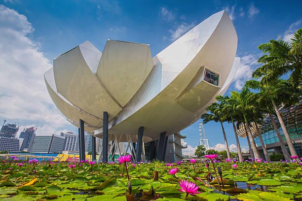 ArtScience Museum at Marina Bay Sands stock photo