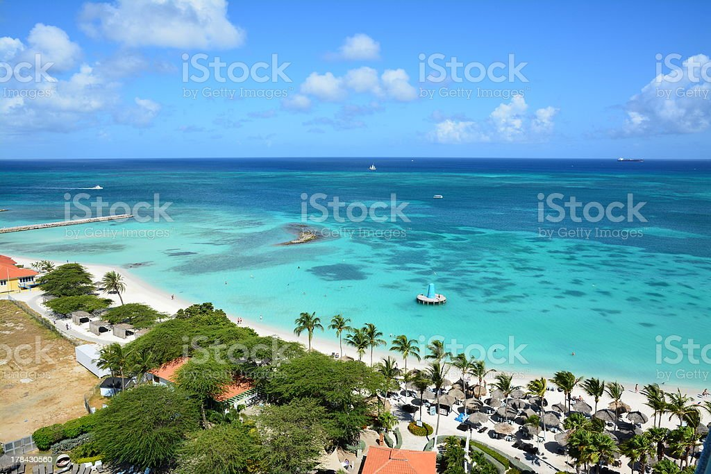 Aruba Palm i i Morze – zdjęcie