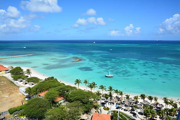 aruba palms and sea - aruba stockfoto's en -beelden