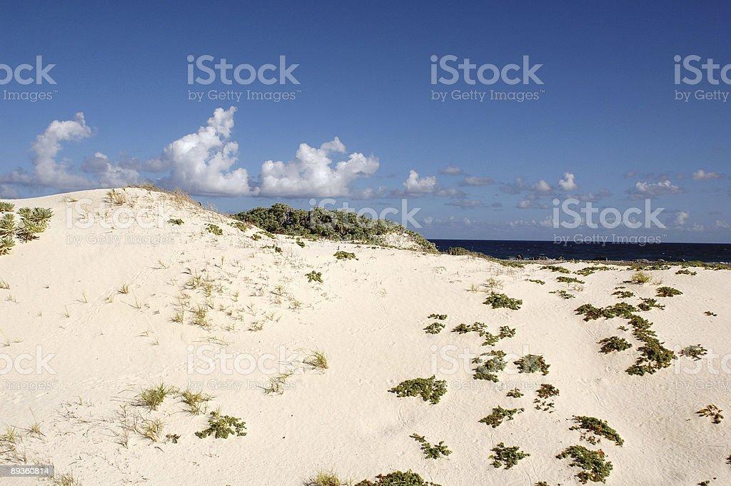 Aruba royalty-free stock photo