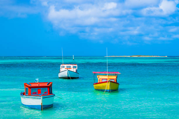aruba, rodgers beach - aruba stockfoto's en -beelden
