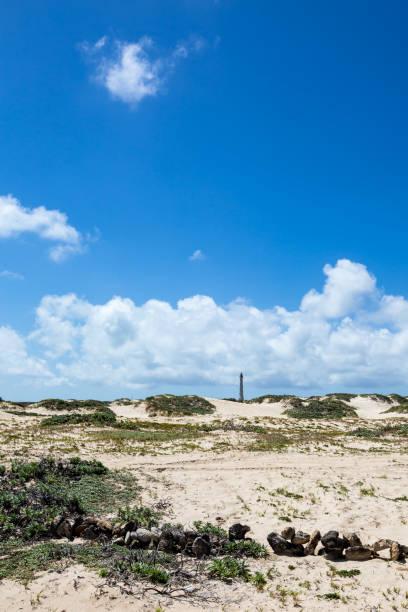 Aruba Sand Dunes stock photo