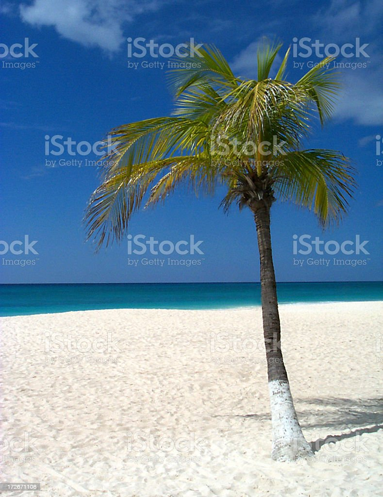 Aruba_1 stock photo