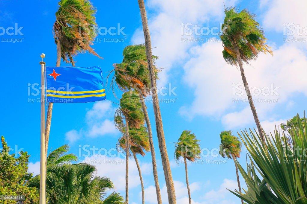 Bandeira de Aruba e Jardim Tropical: palm folhagem de árvores, Aruba, Caribe holandês. - foto de acervo