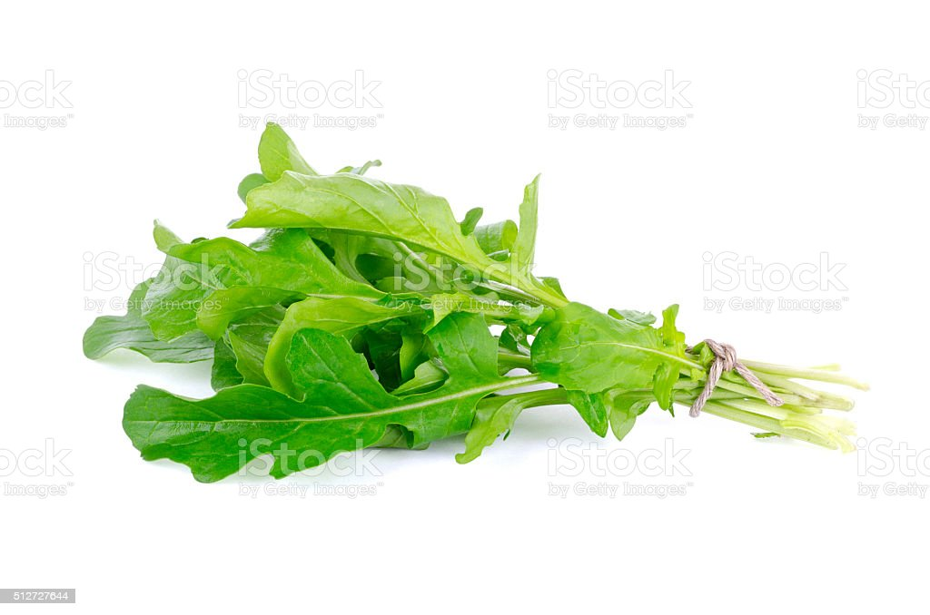 Arugula Isolated on white stock photo