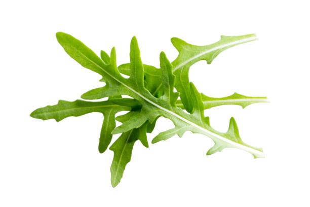 Arugula leaves isolated on white background. stock photo