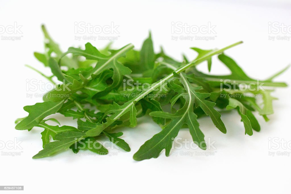 Arugula Lettuce stock photo