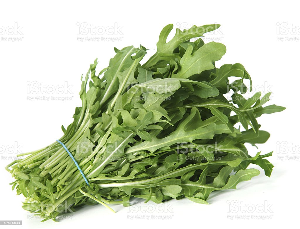 Arugula royalty-free stock photo