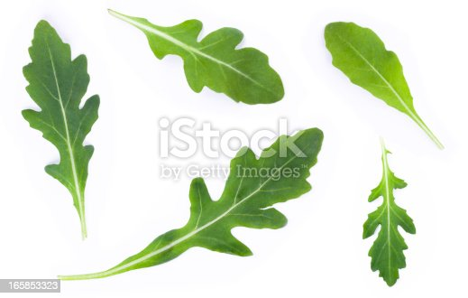 rucola set over white