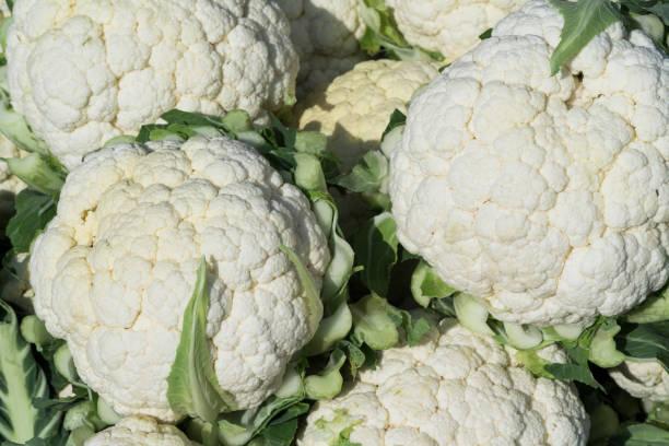 As shot fresh cauliflower photo stock photo