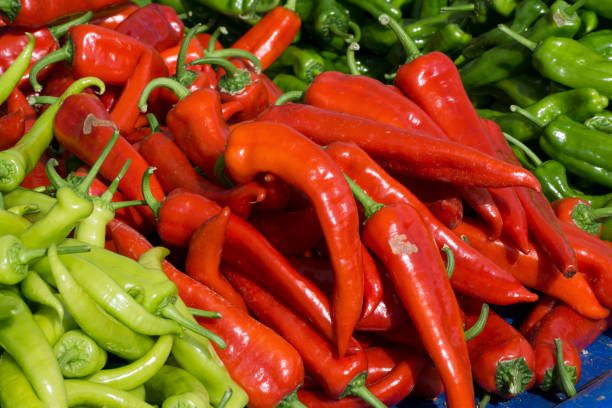 As shot fresh red and green pepper photo stock photo