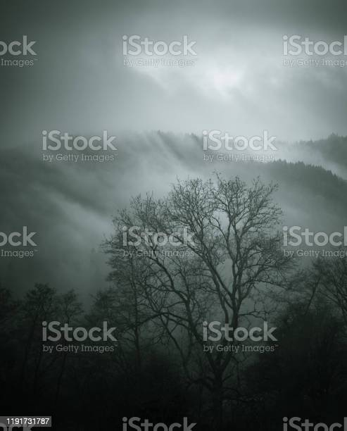 Photo of As the clouds roll in