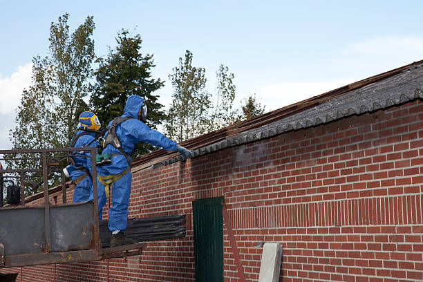 Asbestos cleanup stock photo