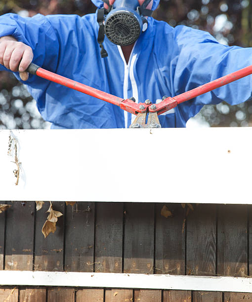 Asbestos corrugated roofing sheet being removed from garage stock photo
