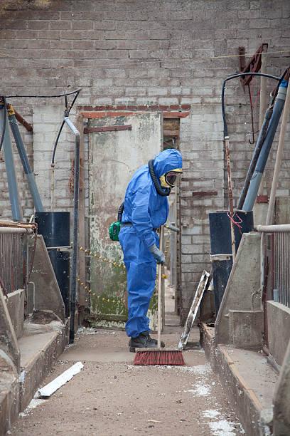 Asbestos removal stock photo