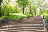 This is a color photograph of ascending concrete stairs surrounded by lush green vegetation in Morningside Harlem Manhattan NYC, USA during spring.