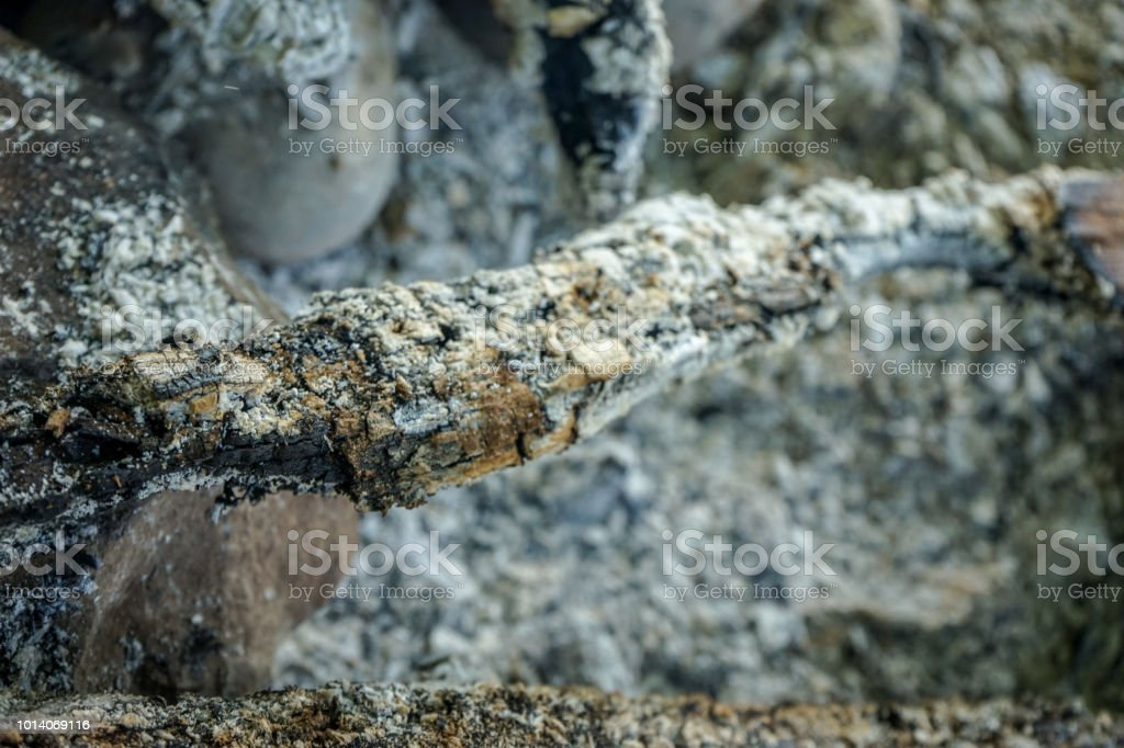 ash from wood remaining after camp fire bbq stock photo