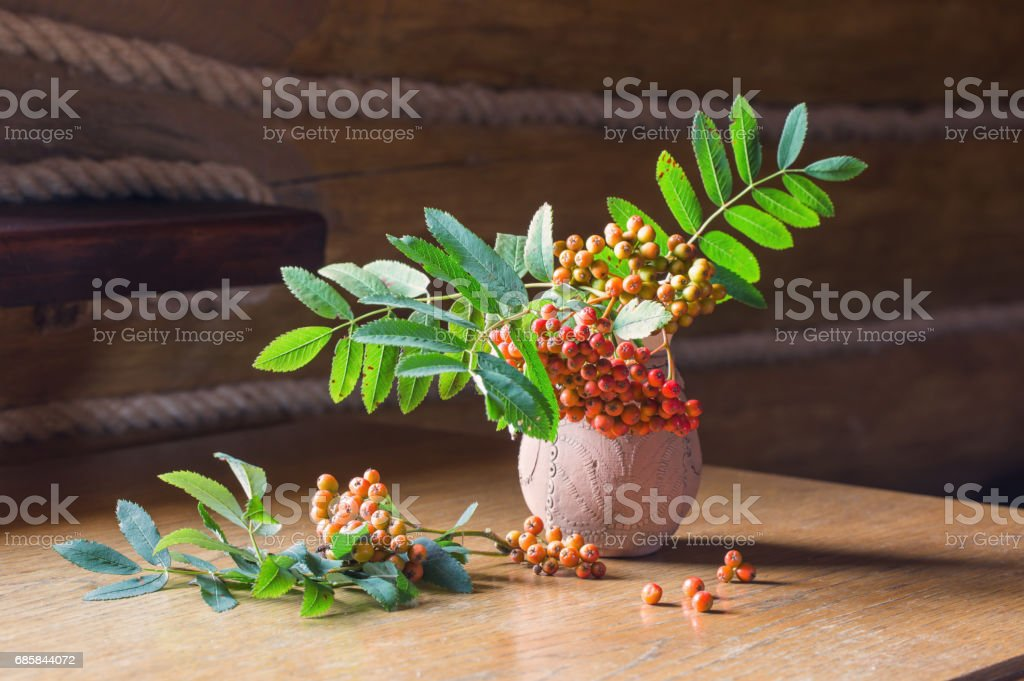 ashberry in jug on wooden table stock photo
