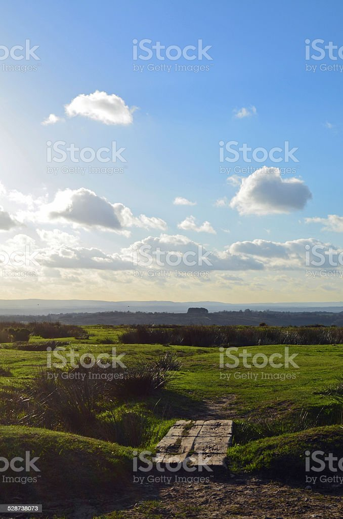 Ashdown Forest in East Sussex, England. stock photo