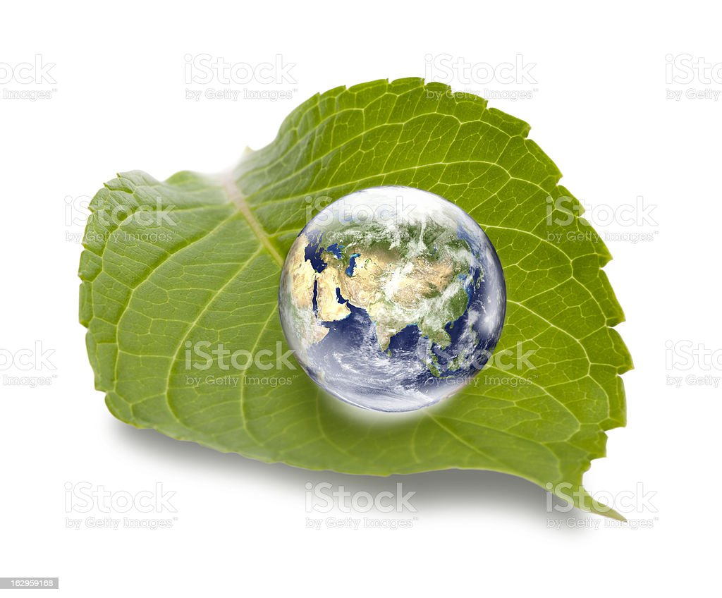 Asia focused globe on green leaf - ecology concept royalty-free stock photo