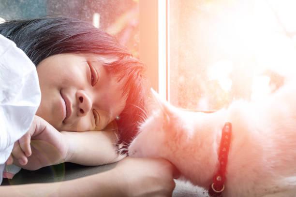 シャム白猫と遊ぶアジアの子供の女の子。少し幸せなアジアの子供は優しく彼女のペットに触れて横たわった。あなたのペットの日を愛します。アニマルコンセプト - ライフスタイル ストックフォトと画像