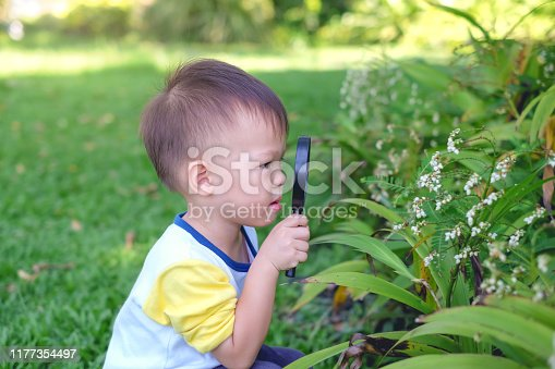 istock Asian 2 - 3 years old toddler boy kid exploring environment by looking through a magnifying glass in sunny day 1177354497