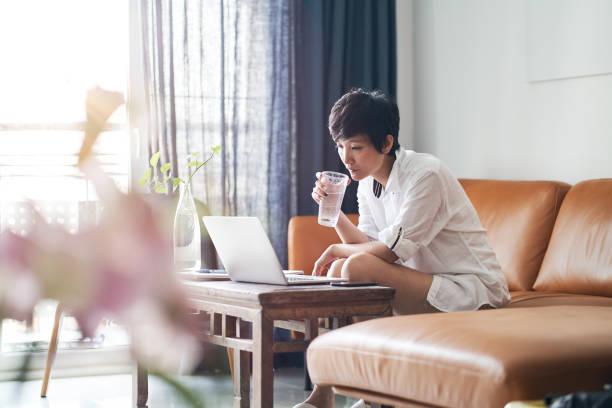 カウチに座って、自宅からノートパソコンで作業するアジアの大人の美しさ - ライフスタイル ストックフォトと画像