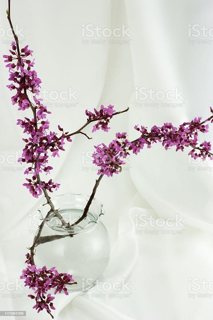 Asian Arrangement of Budding Twigs royalty-free stock photo