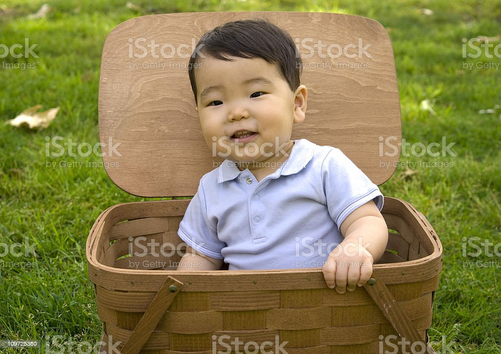 Asian Baby Boy, Happy Korean Child Sitting Inside Picnic Basket royalty-free stock photo