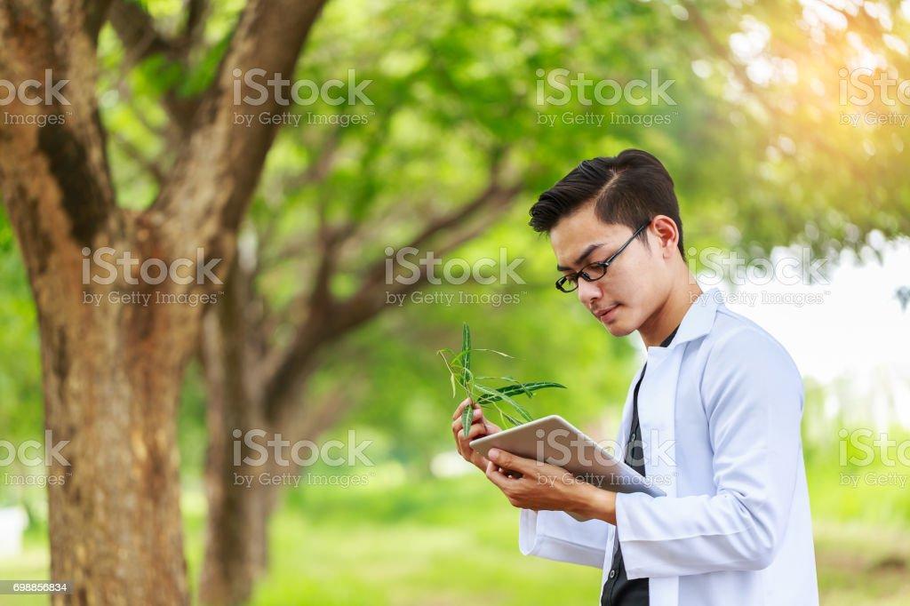 Chercheur en biotechnologie asiatique plantes examen à forest park - Photo
