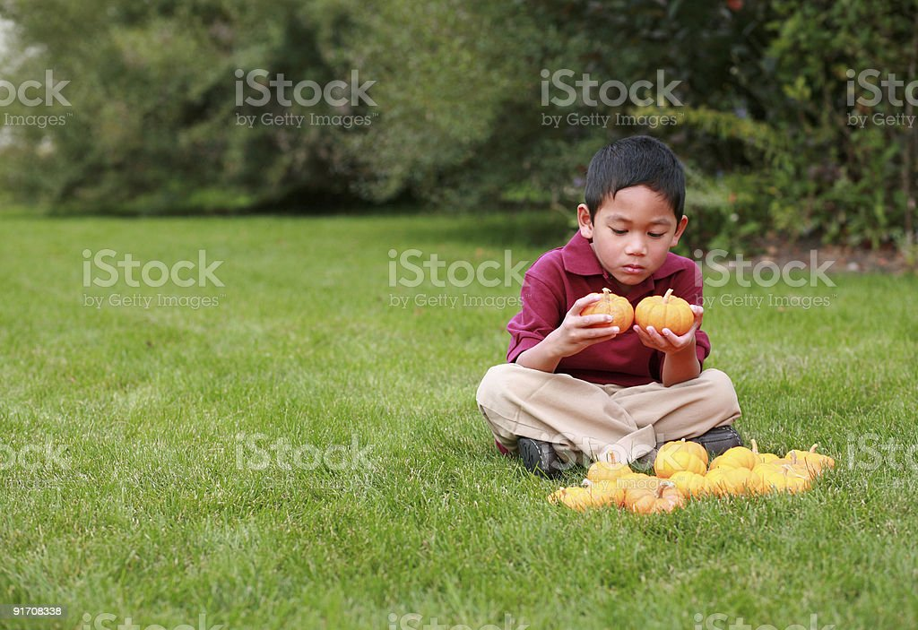 Asian Boy holding two pumpkins royalty-free stock photo
