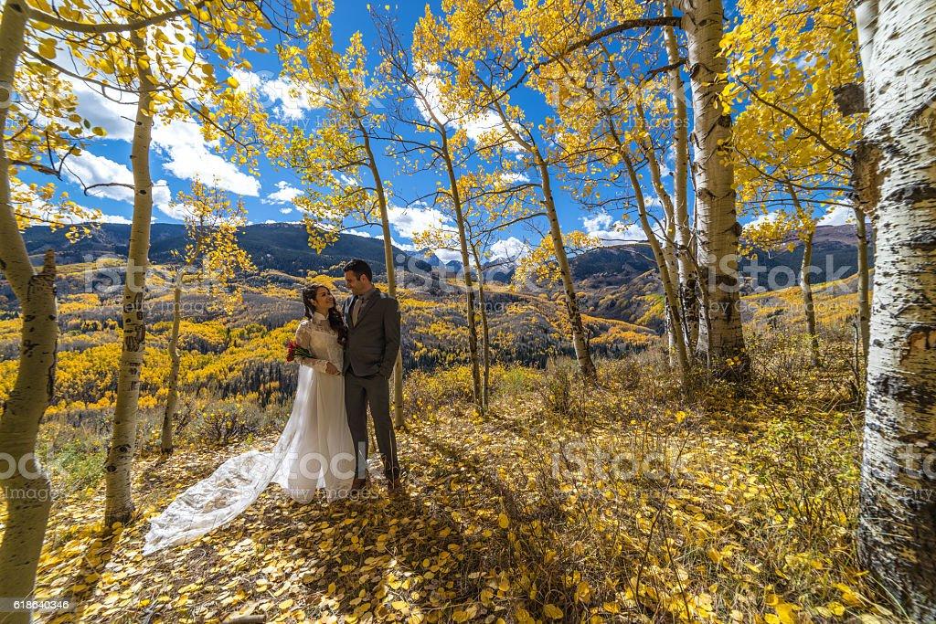 Asian bride & groom.  Autumn Foliage, Colorado Mountains of Aspen stock photo