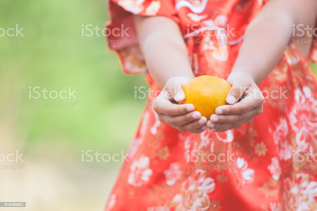 Asian child girl in china traditional dress holding an orange and...