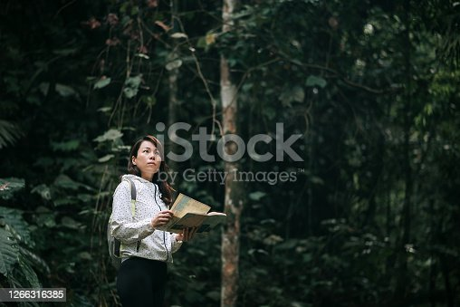 female hiker pauses to look upwards into forest