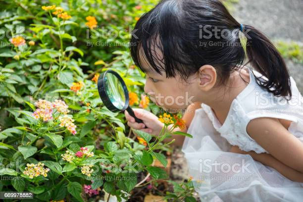 Asian chinese little girl looking at flower through a magnifying picture id669978882?b=1&k=6&m=669978882&s=612x612&h=rlj3xwsg3ou sbxnqwq0uy4f xddd8a3df4apkhgqcg=