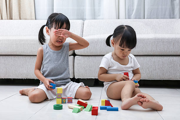 Asian Chinese little sisters struggle for blocks stock photo