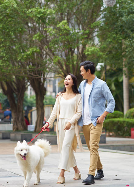 Asian couple laughing while walking dog outdoor in garden picture id898376464?b=1&k=6&m=898376464&s=612x612&w=0&h=dkbl249 bz1nqgwxd0vooyc3v5dpgytek7 qmnpbkrq=