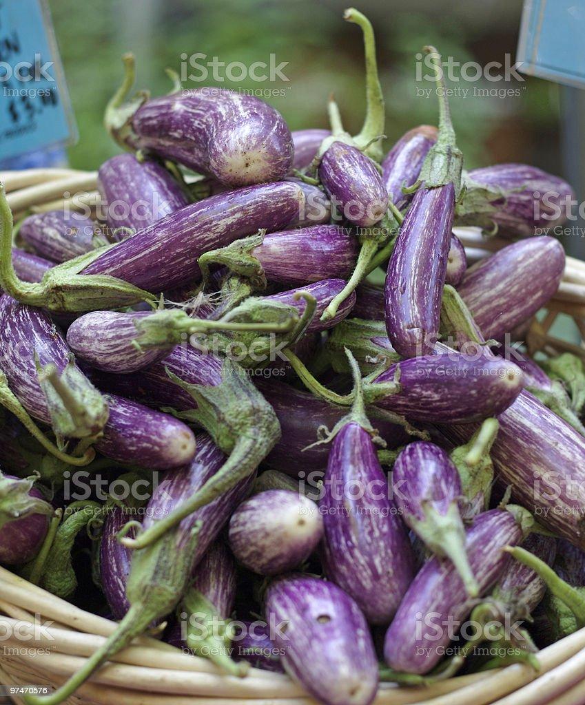 Asian Eggplants royalty-free stock photo
