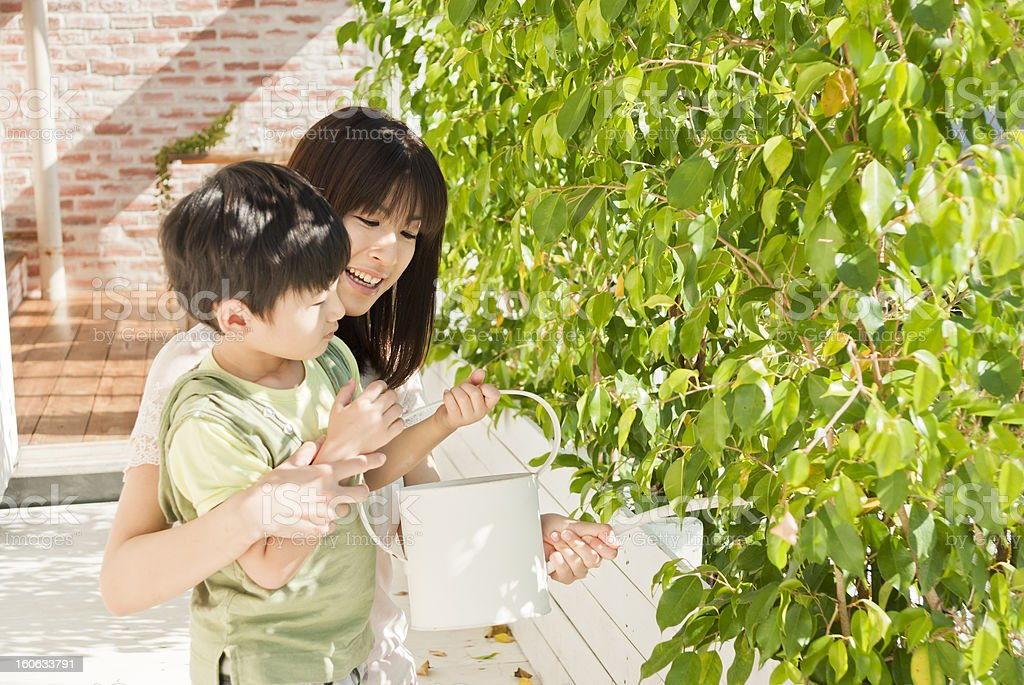Asian family, watering plants royalty-free stock photo