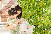 A young Japanese mother, showing how to water plants to her 3-year-old boy. Japan iStockalypse.