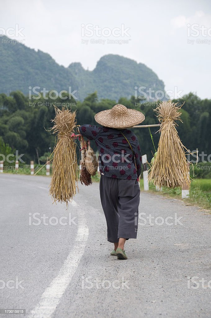 Asian Farm Worker royalty-free stock photo
