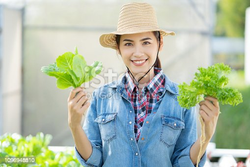 1096949092 istock photo Asian farmer at hydroponic vegetables salad farm. 1096948810