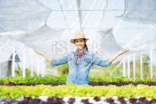1096949092 istock photo Asian farmer at hydroponic vegetables salad farm. 1153771593