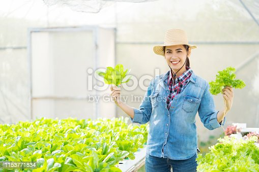1096949092 istock photo Asian farmer at hydroponic vegetables salad farm. 1153771834